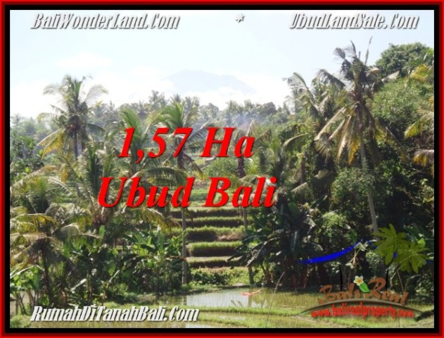 FOR SALE LAND IN Sentral Ubud BALI TJUB549