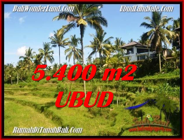 Magnificent 5,400 m2 LAND FOR SALE IN Ubud Tegalalang TJUB550