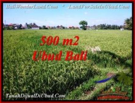 FOR SALE Magnificent PROPERTY LAND IN UBUD TJUB545