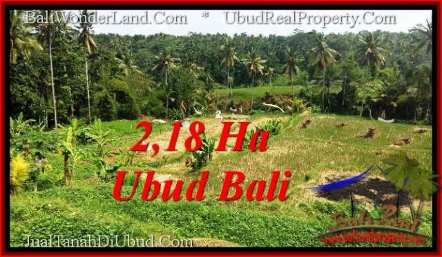 Affordable LAND FOR SALE IN UBUD TJUB546