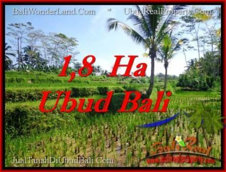 FOR SALE Exotic PROPERTY 16,000 m2 LAND IN UBUD BALI TJUB553