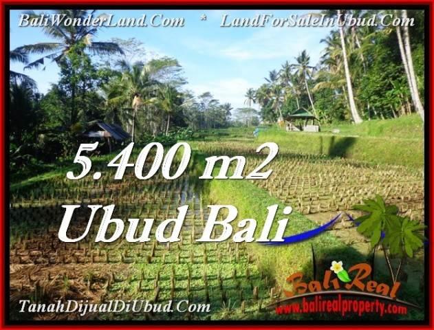 FOR SALE Beautiful PROPERTY 5,400 m2 LAND IN Ubud Payangan TJUB554
