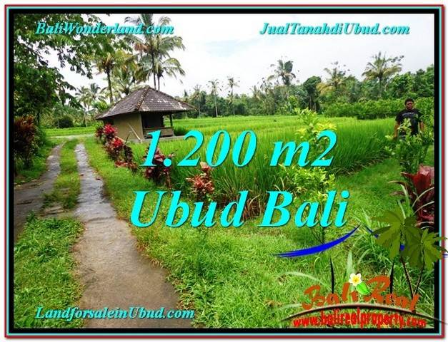 FOR SALE 1,200 m2 LAND IN UBUD TJUB559