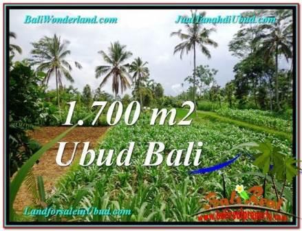FOR SALE Exotic LAND IN Ubud Payangan TJUB560