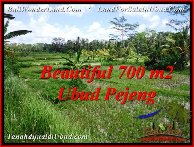 700 m2 LAND IN UBUD BALI FOR SALE TJUB534