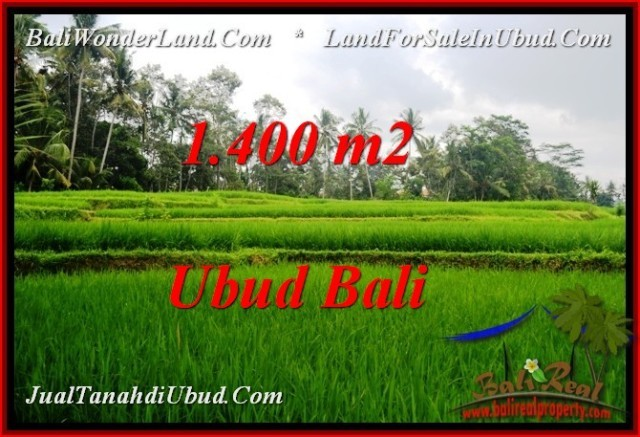 Magnificent PROPERTY 1,400 m2 LAND SALE IN Ubud Pejeng TJUB539