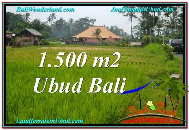 FOR SALE Magnificent PROPERTY LAND IN UBUD TJUB558