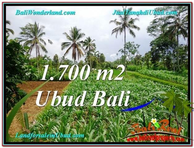 1,700 m2 LAND IN UBUD BALI FOR SALE TJUB560