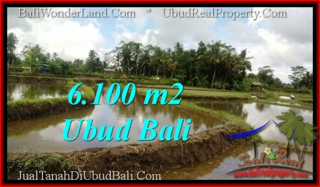 Exotic 6,100 m2 LAND IN UBUD BALI FOR SALE TJUB547