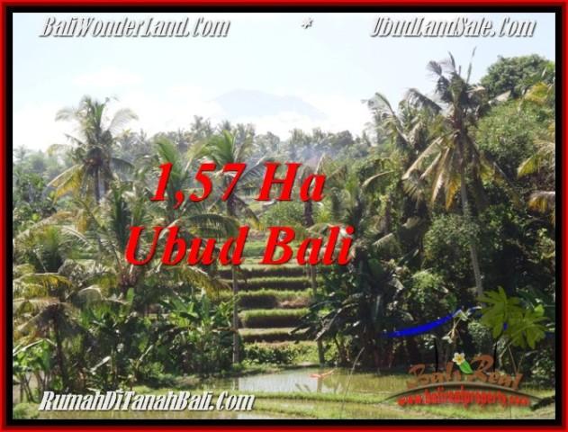 Magnificent 15,700 m2 LAND FOR SALE IN Sentral Ubud TJUB549