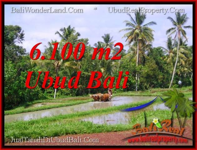 FOR SALE Magnificent PROPERTY 6,100 m2 LAND IN Ubud Tegalalang TJUB552