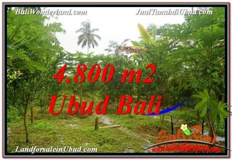 FOR SALE Affordable PROPERTY 4,800 m2 LAND IN UBUD BALI TJUB571