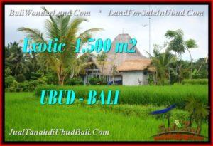 Beautiful LAND IN UBUD BALI FOR SALE TJUB541