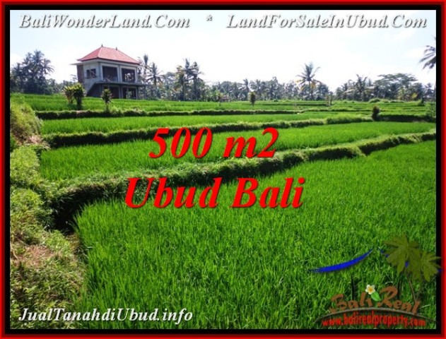 Magnificent PROPERTY LAND IN UBUD BALI FOR SALE TJUB543