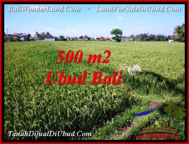 Magnificent PROPERTY LAND FOR SALE IN UBUD BALI TJUB545