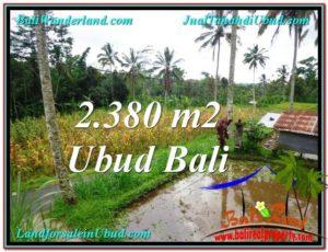 Exotic PROPERTY 2,380 m2 LAND FOR SALE IN Ubud Payangan TJUB567