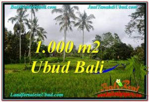 Magnificent PROPERTY 1,000 m2 LAND SALE IN UBUD BALI TJUB570