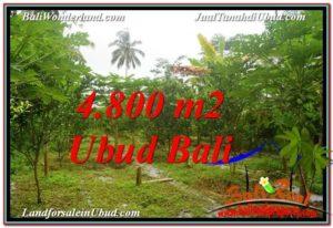 Beautiful PROPERTY Ubud Payangan 4,800 m2 LAND FOR SALE TJUB571