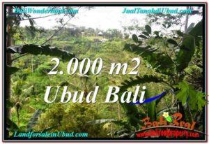 Beautiful LAND FOR SALE IN UBUD TJUB573