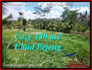 FOR SALE Exotic 450 m2 LAND IN UBUD BALI TJUB535