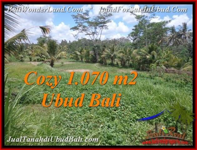 Affordable 1,070 m2 LAND SALE IN UBUD BALI TJUB536
