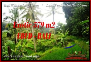 FOR SALE Exotic 579 m2 LAND IN UBUD BALI TJUB538