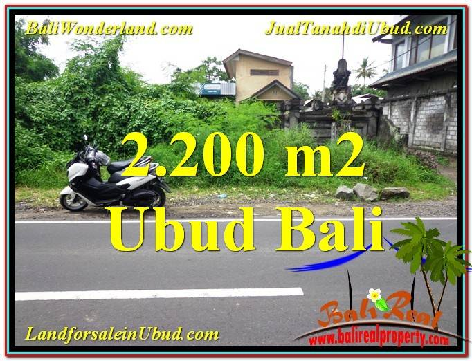 Magnificent PROPERTY 2,200 m2 LAND SALE IN Sentral Ubud TJUB565