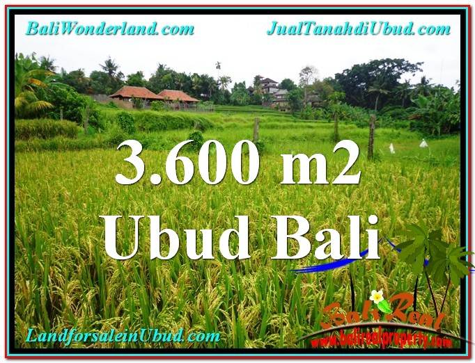 Beautiful PROPERTY Sentral Ubud 3,600 m2 LAND FOR SALE TJUB566