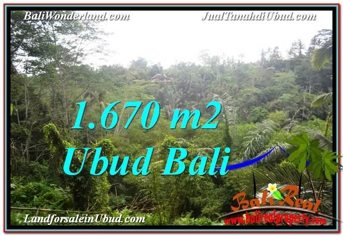 UBUD BALI 1,670 m2 LAND FOR SALE TJUB569