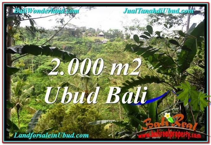 UBUD BALI 2,000 m2 LAND FOR SALE TJUB573