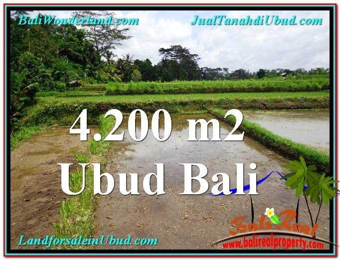 Magnificent PROPERTY 4,200 m2 LAND SALE IN Ubud Tampak Siring TJUB561