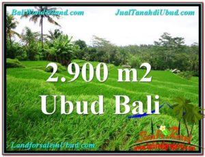 Exotic PROPERTY UBUD LAND FOR SALE TJUB564