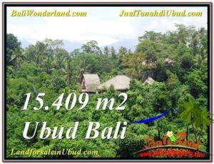 Beautiful PROPERTY Sentral Ubud 15,490 m2 LAND FOR SALE TJUB568