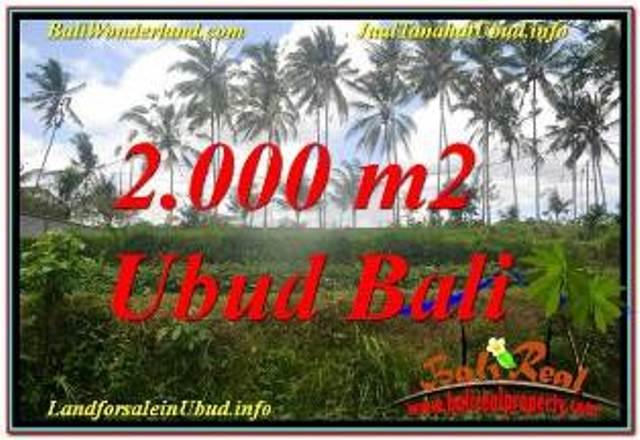 FOR SALE Exotic 2,000 m2 LAND IN UBUD BALI TJUB625