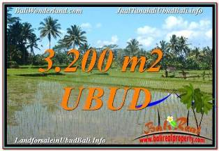 Magnificent PROPERTY LAND SALE IN UBUD TJUB628