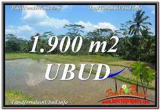 Exotic PROPERTY 1,900 m2 LAND SALE IN Ubud Payangan TJUB629