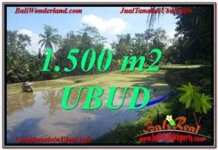 Exotic PROPERTY 1,500 m2 LAND FOR SALE IN Ubud Payangan TJUB630