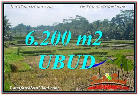 FOR SALE Magnificent PROPERTY 6,200 m2 LAND IN Ubud Payangan TJUB631