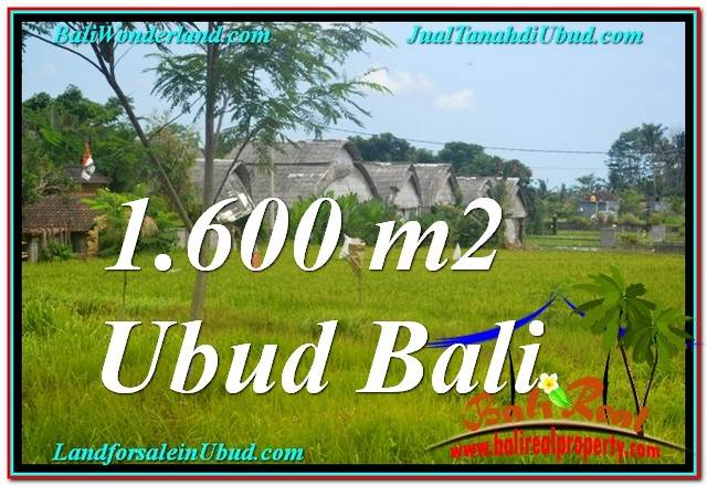 FOR SALE Magnificent PROPERTY 1,600 m2 LAND IN Sentral / Ubud Center TJUB633