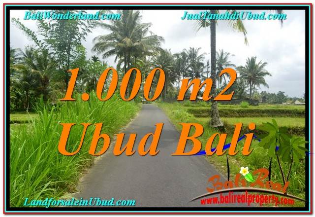 FOR SALE Magnificent LAND IN Ubud Tampak Siring BALI TJUB634