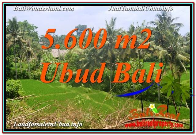 Exotic PROPERTY LAND IN UBUD FOR SALE TJUB636