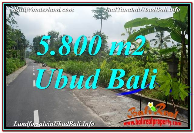 FOR SALE Exotic PROPERTY LAND IN UBUD TJUB637