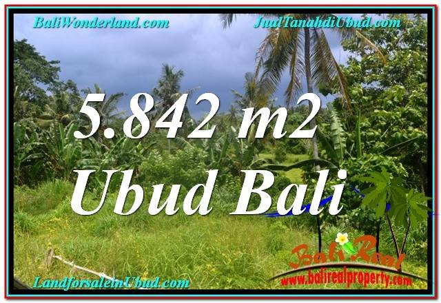 Exotic PROPERTY LAND IN UBUD FOR SALE TJUB638