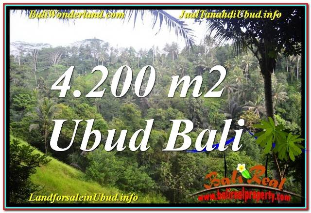 Magnificent PROPERTY LAND IN Sentral / Ubud Center BALI FOR SALE TJUB639