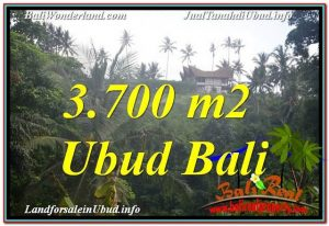 Magnificent PROPERTY UBUD LAND FOR SALE TJUB640