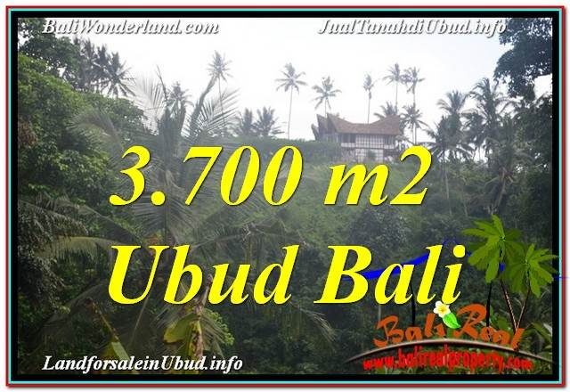 Magnificent PROPERTY UBUD LAND FOR SALE TJUB640
