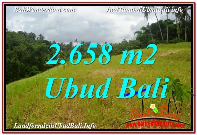 Beautiful PROPERTY LAND IN UBUD BALI FOR SALE TJUB641