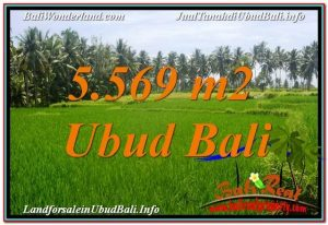 Sentral / Ubud Center BALI LAND FOR SALE TJUB642