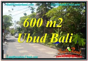 FOR SALE 600 m2 LAND IN UBUD TJUB644