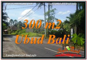 Exotic 300 m2 LAND IN UBUD BALI FOR SALE TJUB646